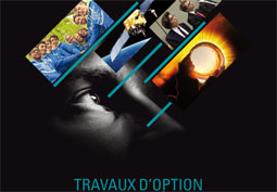 Travaux d'option 2017