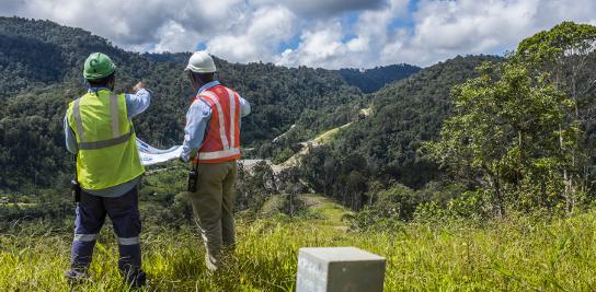 Biodiversité : Comment compenser dans une démarche ERC ?