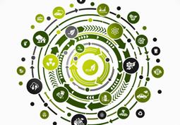 L'�conomie circulaire ou la comp�tition pour les ressources