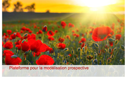 Journée de la Chaire Modélisation prospective et développement durable