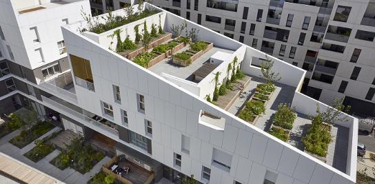 Soirée de la Chaire éco-conception sur la Végétalisation en ville