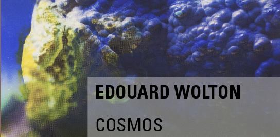 Cosmos, par Edouard Wolton