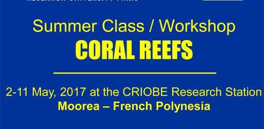 Workshop CORAL REEFS