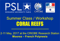 Workshop CORAL REEFS