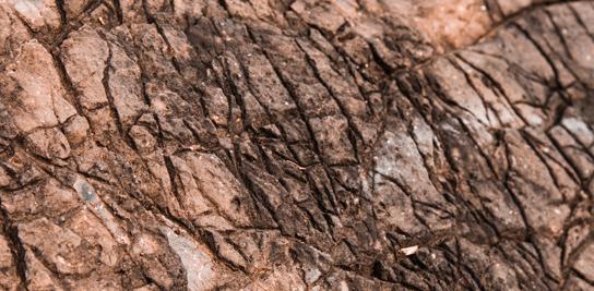 Mécanique des roches : défis et enjeux