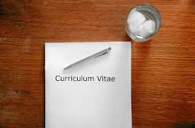 Formation : How to write a CV, getting an interview