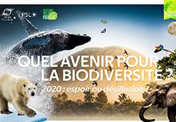 Quel avenir pour la biodiversité ? 2020, espoir ou désillusion ?