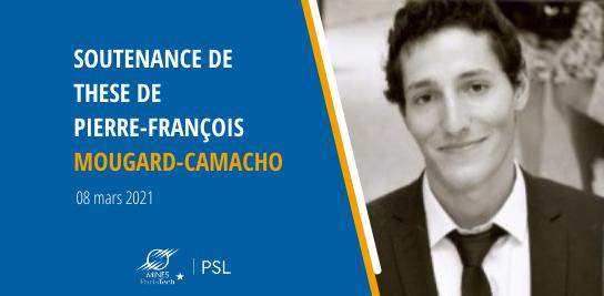 Soutenance de thèse de Pierre-François MOUGARD-CAMACHO